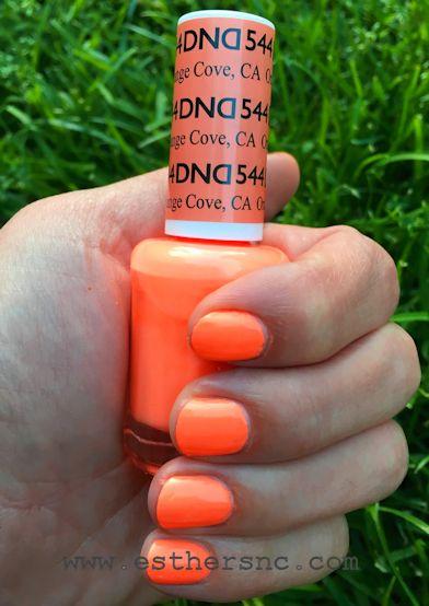 Daisy #544 orange cove ca
